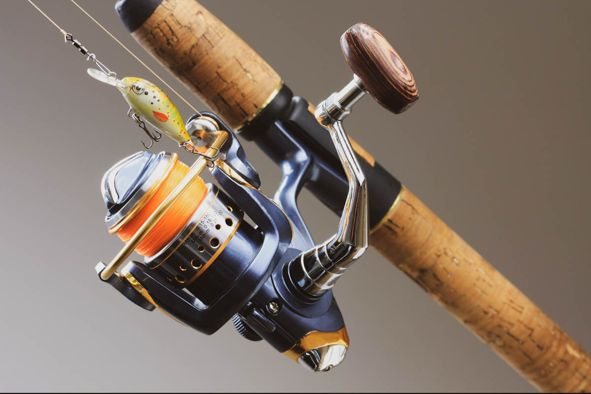 Best Ultralight Spinning Reel For Different Fish Species