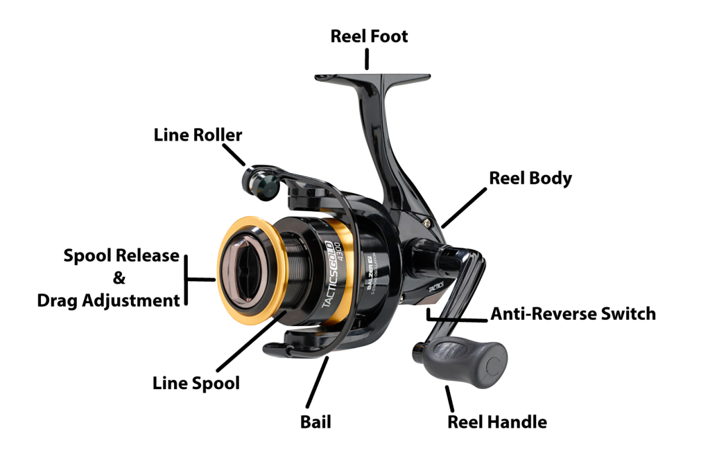 Different Components of a Spinning Reel