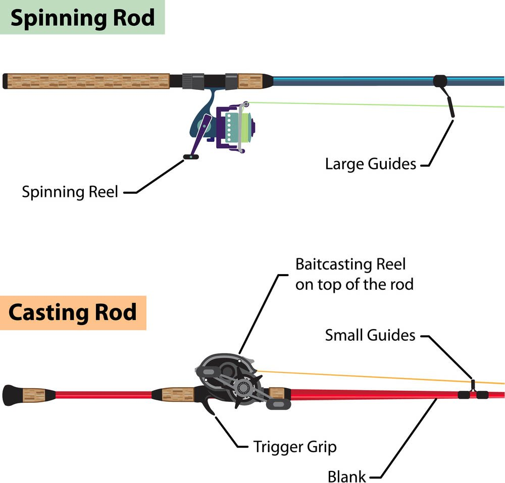 Diagram of spinning rod and baitcasting rod