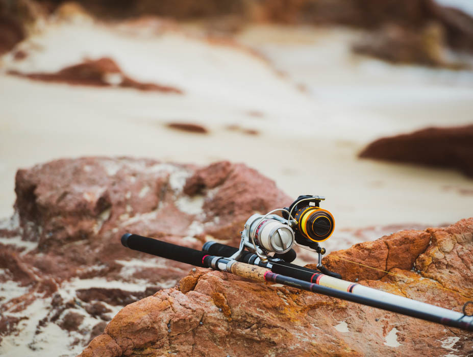 Best Surf Reel and Fishing rods for surf fishing