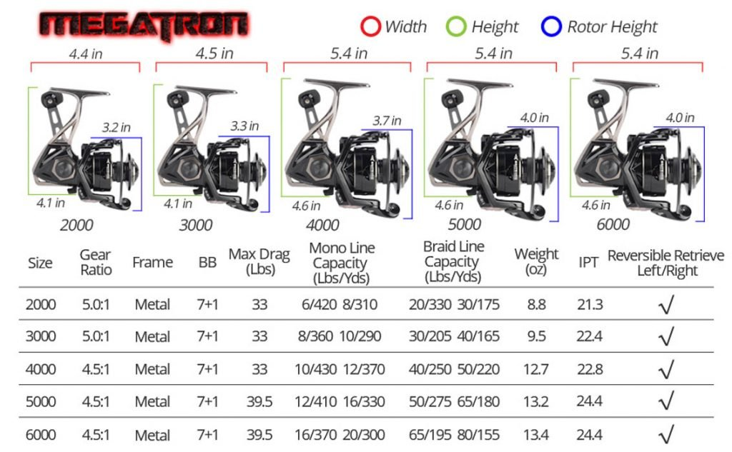 Different sizes of spinning reels