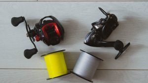Spinning and casting reel with fishing lines