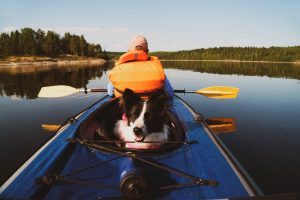 The owner and the dog in a life jacket floating in a kayak boat